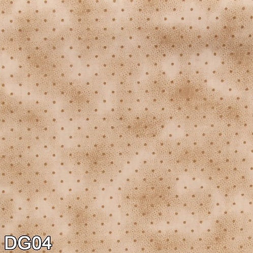 DG-04