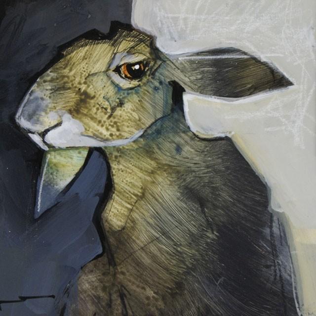 negative rabbit
