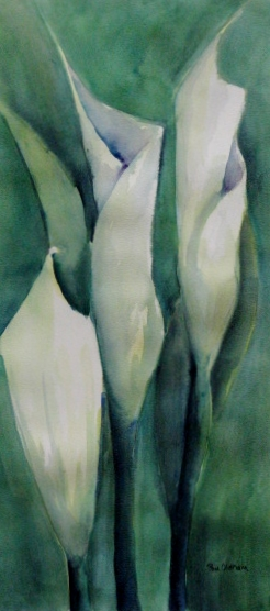 Calla Lily Study in Green