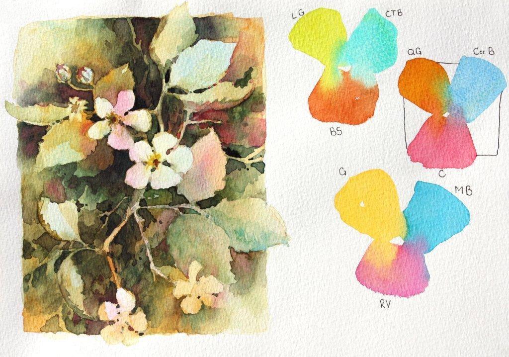 Flowers  5 Negative Blossoms
