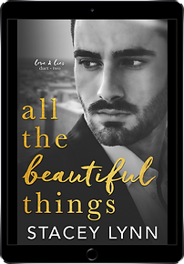 AllTheBeautifulThings-Reader.png