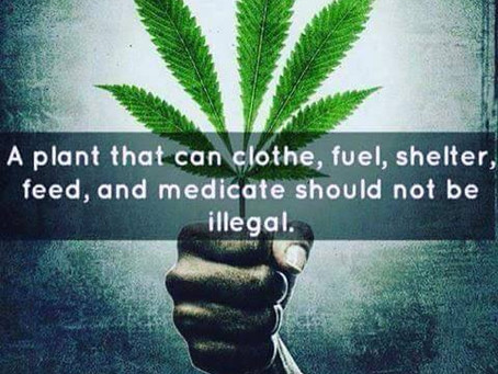 #KOIL - Hemp...And Why America's UN-Constitutional Standing Army Protects & Serves the Oligarchs