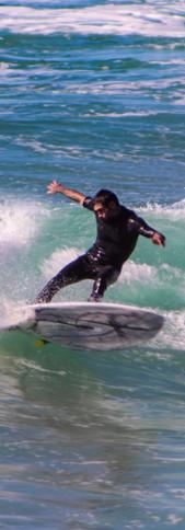 Photos Surf Swell May - 28.JPG