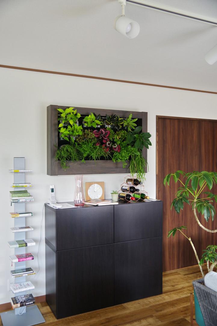 壁面の緑化