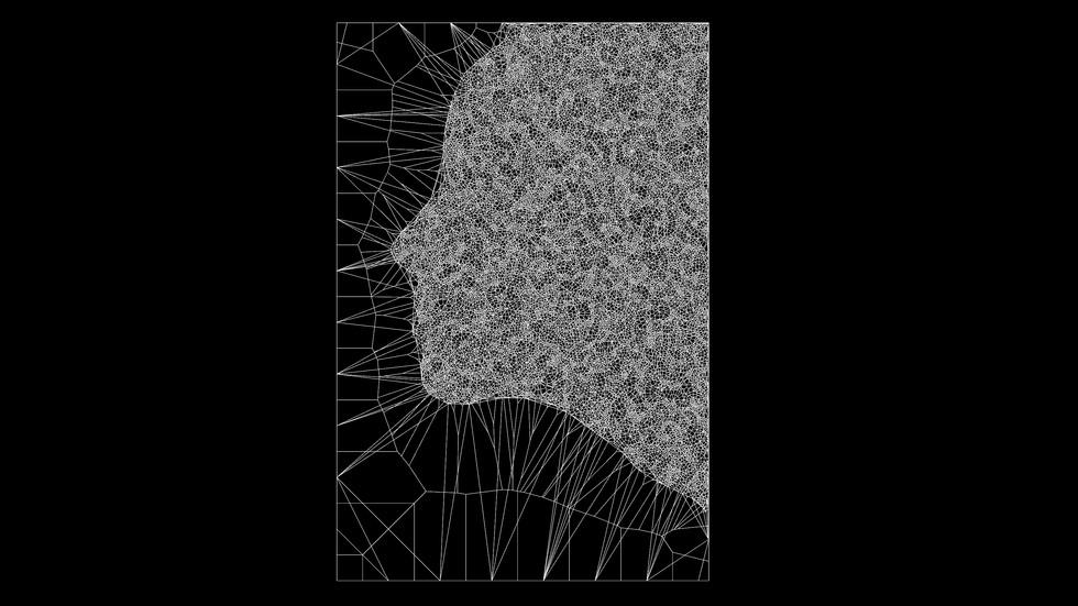 Voronoi Portrait