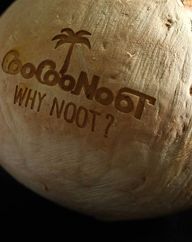 coconut_shell_CO2_laser_marking_technolo