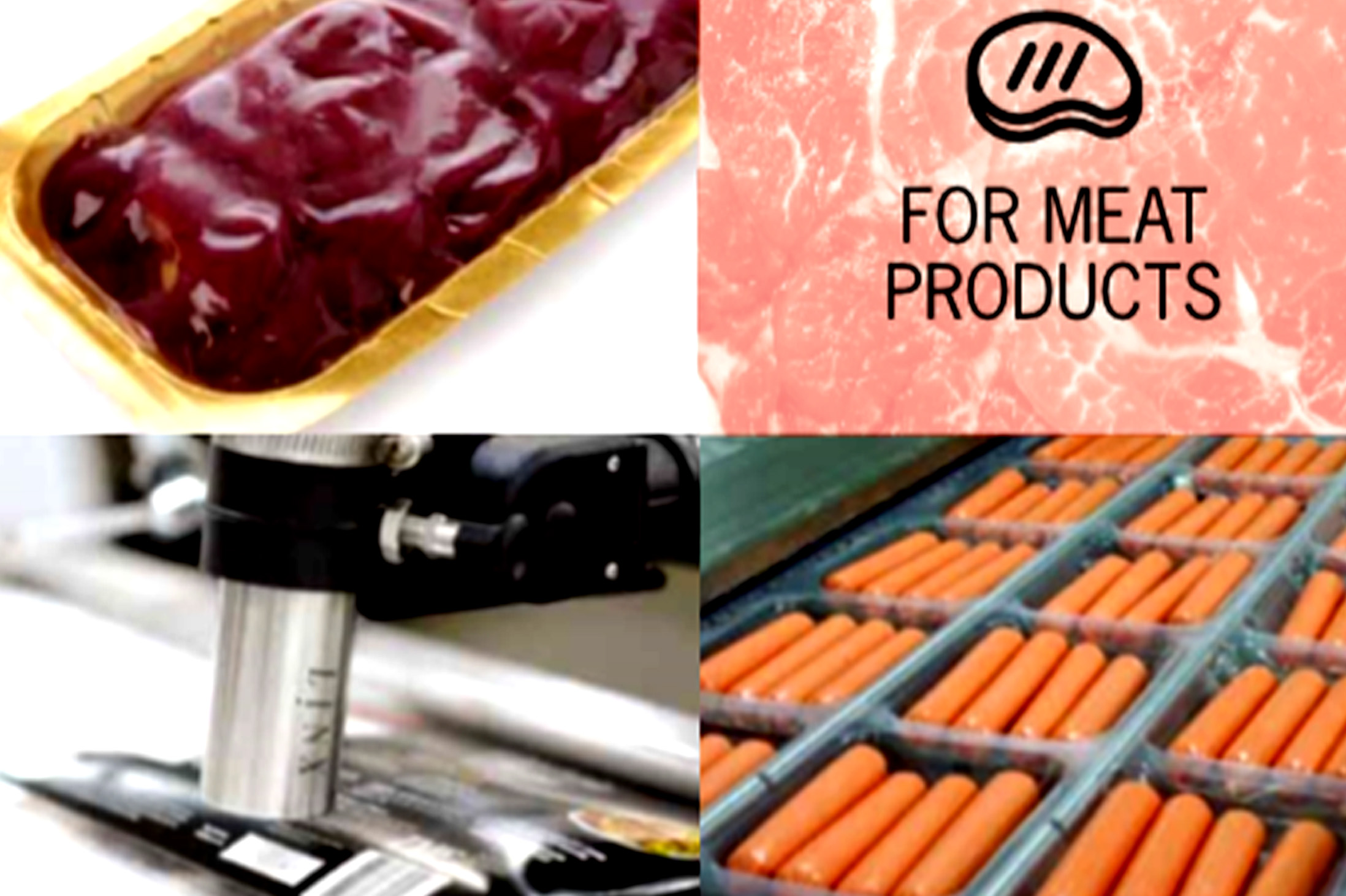 meat processing business