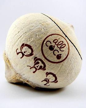 coconut-shell-laser-marking-logo.jpg