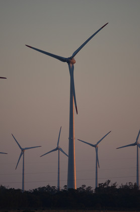 wind-farm-647492.jpg