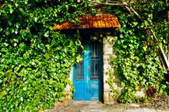 Mystical Doorway