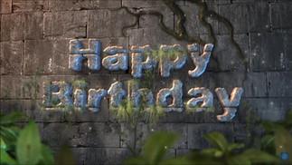 Jungle Happy Birthday.mp4