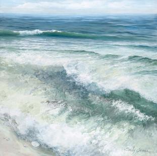 Surf & Sanddollar