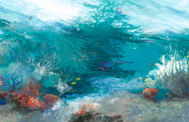 Ocean Splendor