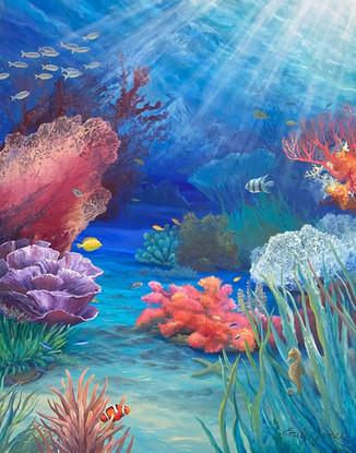 Coral Wonders