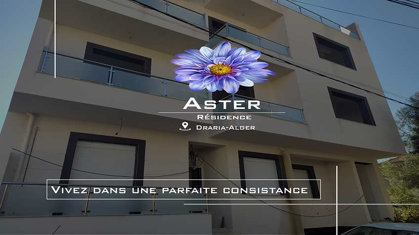 Aster Site Web.png