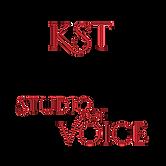 KST_logo_3000_trans (1).png