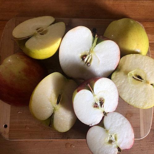 Apples - Frecon Fruit Farm