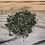 Thumbnail: Case (10pc) Farmstead Hemp Tea