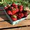 Thumbnail: Strawberries - The Berry Farm, Kutztown