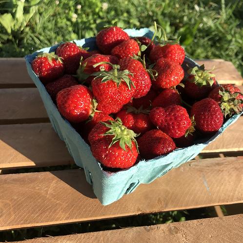 Strawberries - The Berry Farm, Kutztown
