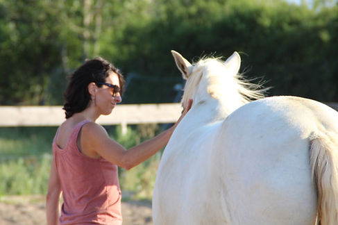 thérapie par le cheval