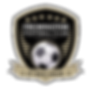 Fremington-Football-Club-Badge-2019.png
