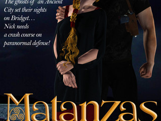 Celebrate the Anniversary of Paranormal Romance Novel Matanzas Moon, by Elizabeth Raven