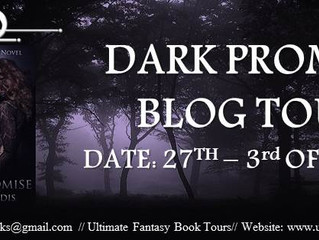 Nikki Landis, Author of Dark Promise, a Paranormal Romance Novel