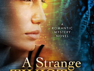 Review: A Strange Twist of Fate, by Debra Erfert, a Romantic Mystery
