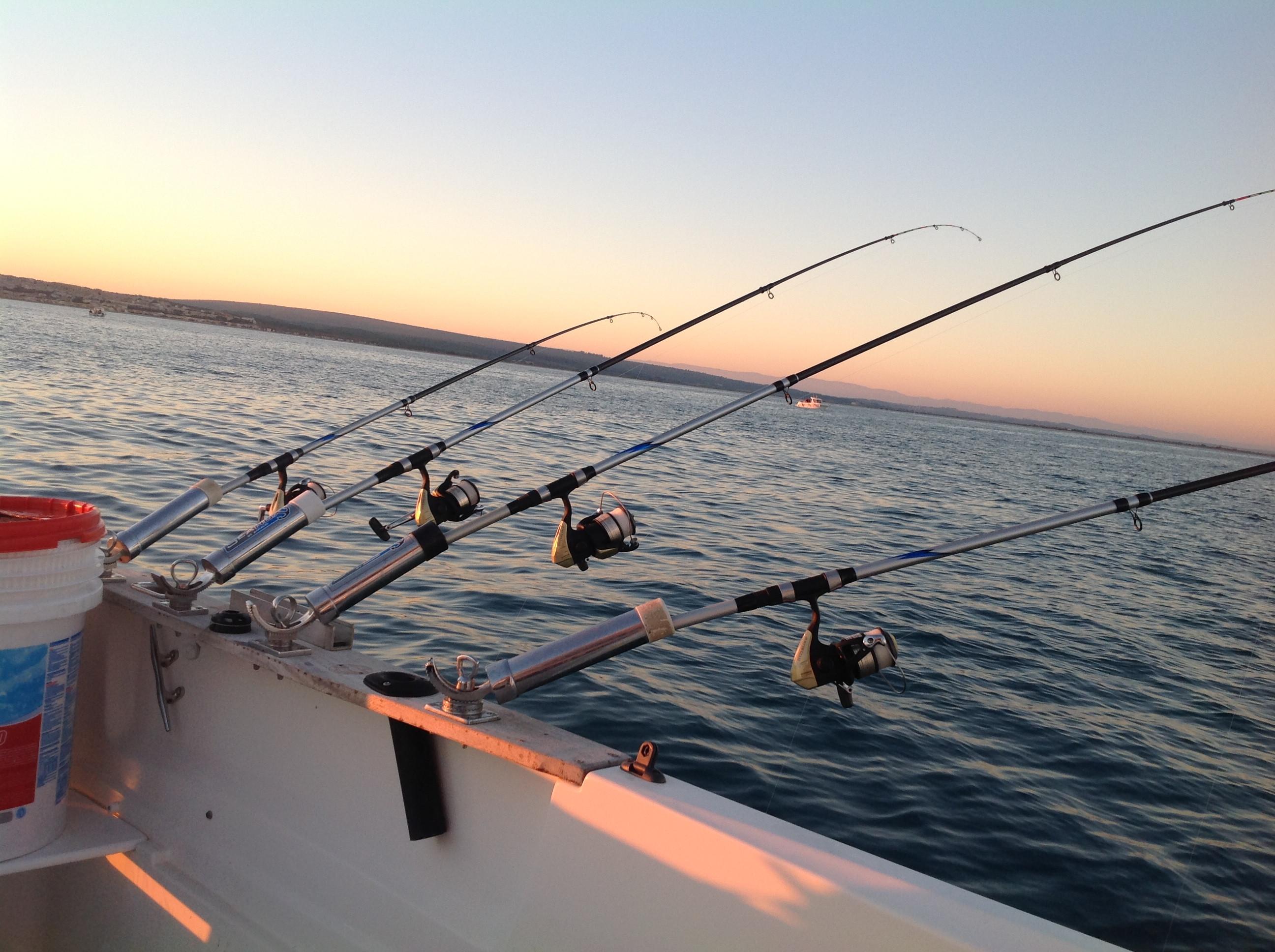 Découverte de la pêche en mer