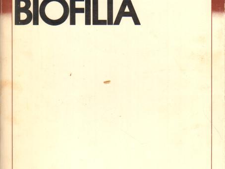 La biofilia, cos'è e quando è nata