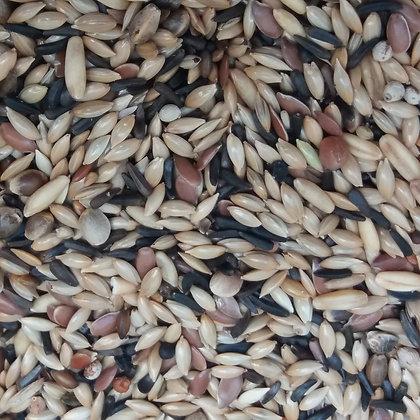 Tessmers Kanarienvogelfutter ohne Rüpsen Premium Qualität - 1 kg