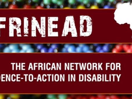 The African Network on Disability (AfriNEAD)