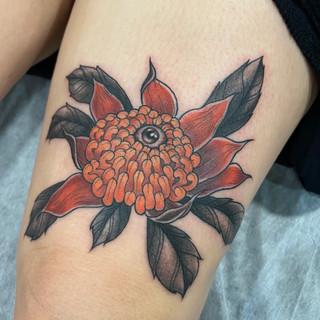 Waratah tattoo by Jade Lomax
