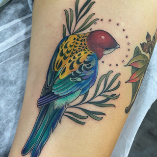 Lorikeet tattoo by Jade Lomax