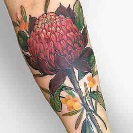 Waratah tattoo by Jade Lomax