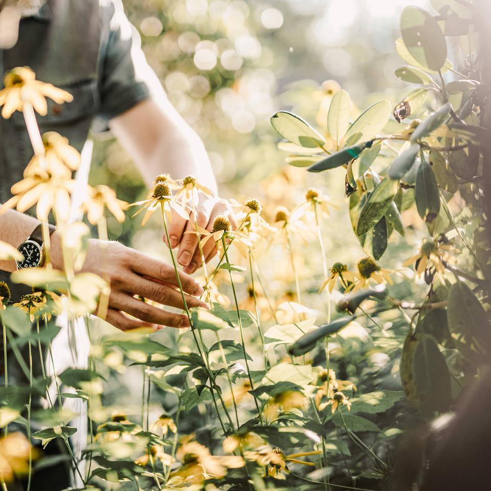 Craggy Gardens Engagement Photographers