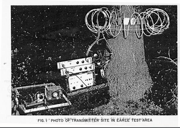 Tree Transmitter