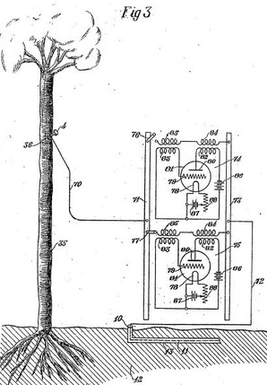 Image from research: Tree Telephony and Telegraphy