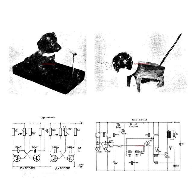 Cybernetic Cat&Dog