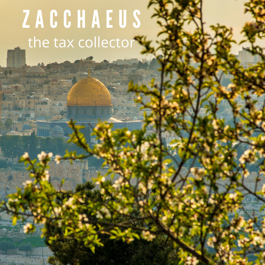 Jesus came to the world and became one of us to save us all. We all have the power to change and grow in peace, gentleness, and joy. Please enjoy the PCCUCC skit of Zacchaeus the Tax Collector (click the image to view).