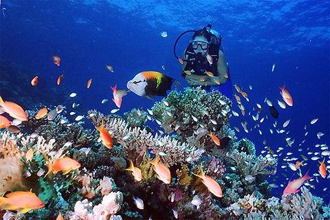 specialità subacquea nitrox
