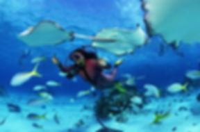 costo corso subacqueo avanzato