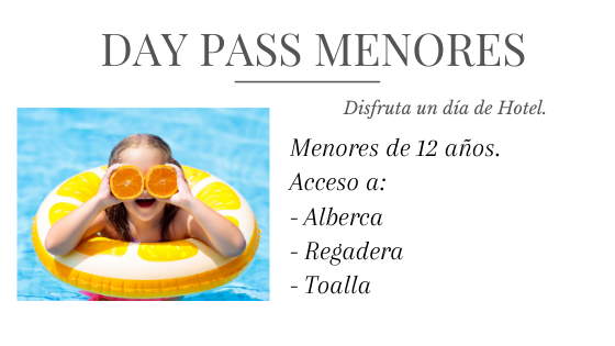 Day Pass Menores