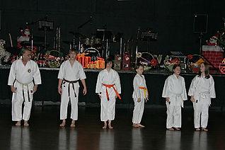 Karateauftritt Gala Ball