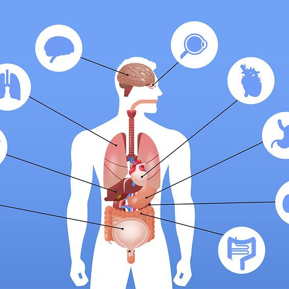 IMAS特別講座 人生の鍵は腸内にあり