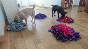 Dogs using a food puzzle, a snuffle mat, to eat their meal