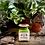 Thumbnail: Herbology