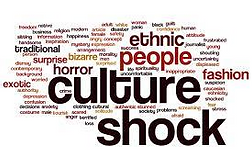 CultureShock.png