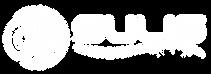 logo-nosub_white.png